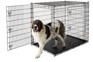 Great Dane Dog Crate